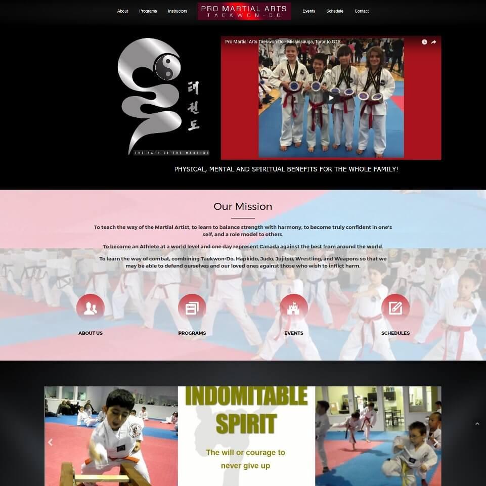 pro martial arts taekwondo